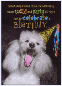 Image Is Loading Poodle With Party Hat Funny Birthday Card Greeting