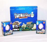 4 Hatch'em Growing Turtle Eggs Toy Grow Science Reptile Egg Play Pet Magic