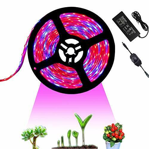 indoor Tesfish 12V LED Plant Grow Light strisce 5M con alimentatore e dimmer
