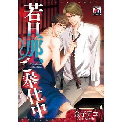 Wakadanna, Gohoushichuu YAOI BL Manga / KANEKO Ako