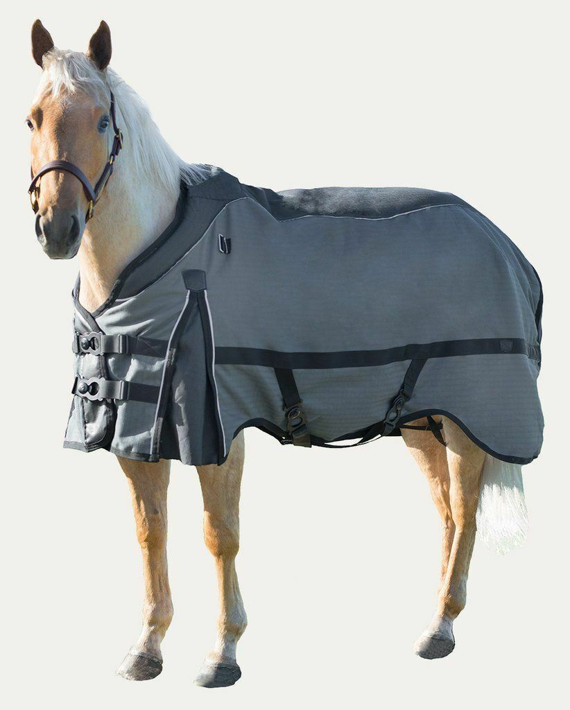Noble Outfitters Guardsman 340g Heavy Waterproof Turnout Blanket Comfort Collar