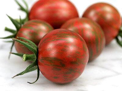 VEGETABLE TOMATO CHERRY ARTISAN PURPLE BUMBLEBEE 10 FINEST SEEDS