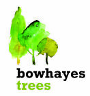 bowhayestrees