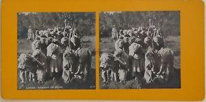 Algeria Preghiera Musulmano Foto Orientalist Stereo Vintage Analogica c1900