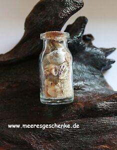 Dekorative Flasche Mit Muscheln, Sand & Korkverschluss Länge Ca. 4,5 Cm Ø: 2 Cm
