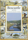 Boscastle by Sheila Bird (Paperback, 2002)