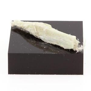 Thetford Mines,quebec,canada A Plastic Case Is Compartmentalized For Safe Storage 7.8 Cts Byssolite