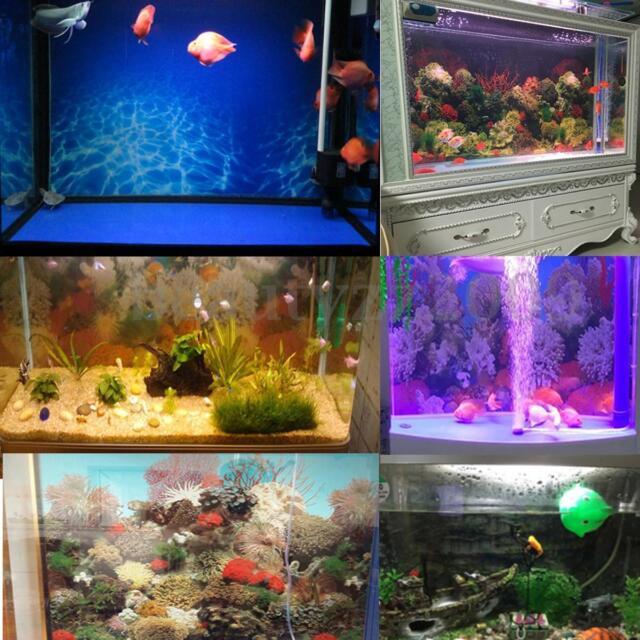 Double Sided Aquarium Background Backdrop Fish Tank Vivarium Landscape Poster