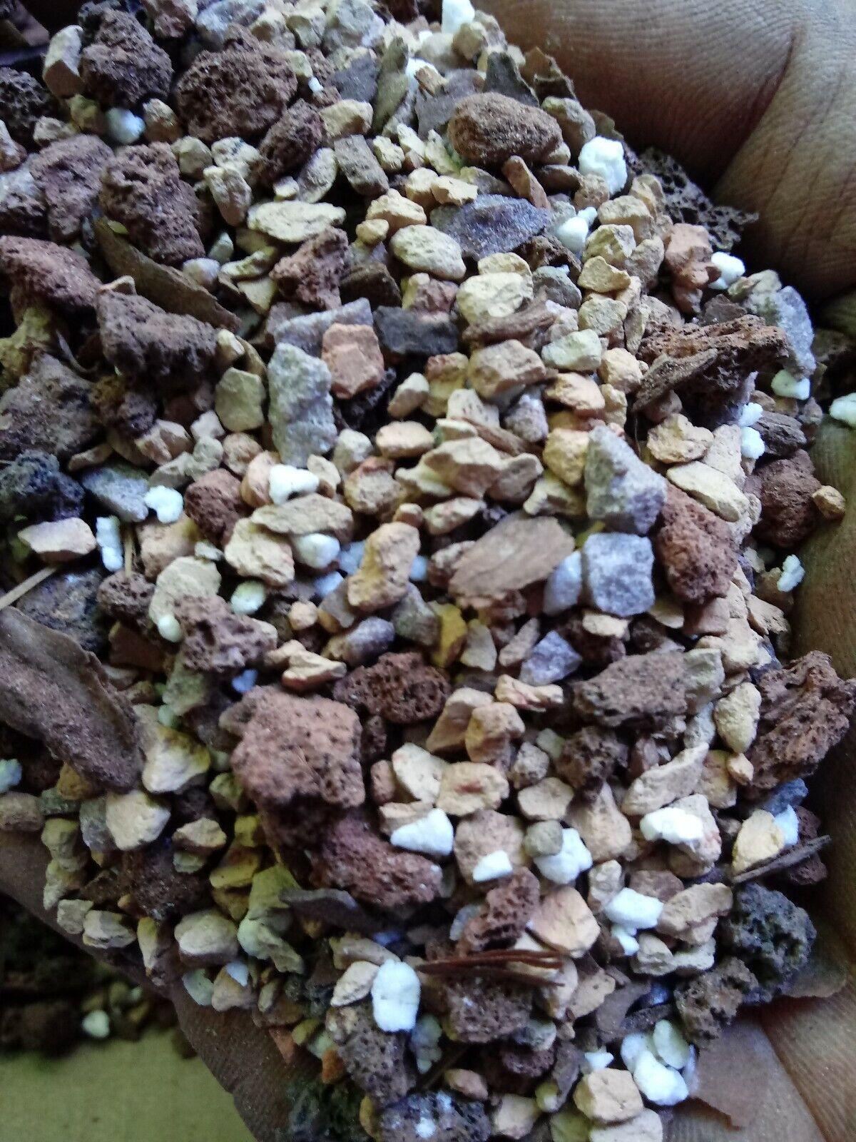 Lucky Bonsai- Standard Mix. 1 gallon/ 5 full pounds dry. 🍀