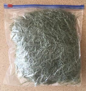 1 Gallon Bag Of Fresh Orlando Live Spanish Moss Crafts