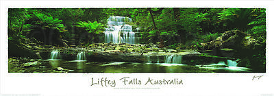 Liffey Falls  Australia printed Poster