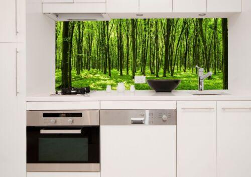 Küchenrückwand Glas Spritzschutz ESG Sicherheitsglas Glasrückwand KR568