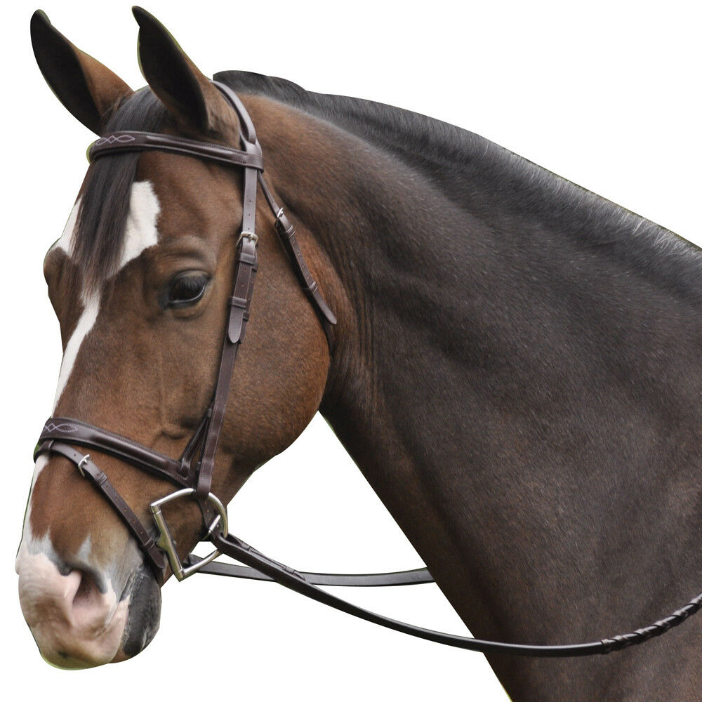 Exselle NEW Elite Plain Raised and Fancy Stitched Bridle with Laced Reins Brown