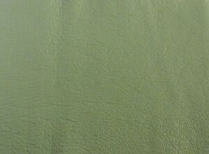 Tree-Green-Leather-offcut-Scrap-ends-Furniture-Clothing-amp-Car-Repairs