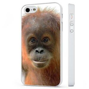 cover pelosa iphone 6s