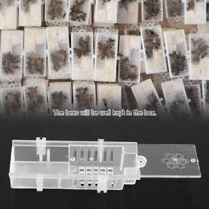 5pcs-Bee-Box-Honey-Beekeeping-Plastic-Hive-Cage-Catching-Tool-Moving-Equipment