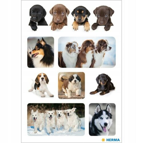 Aufkleber  Sticker Stickerbogen  Dog Hund Hunde     Stickers #  48