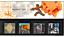 1994-1999-Full-Years-Presentation-Packs thumbnail 55