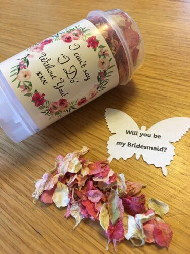 Veux-tu être ma demoiselle d/'honneur Confettis Push Pop Delphinium rose Pétales de Mariage