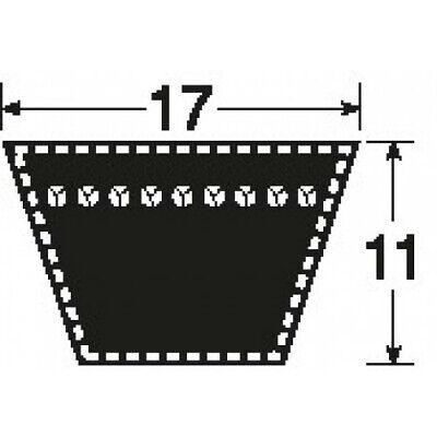 B66 17x1676 Li  klassischer Keilriemen nach DIN2215
