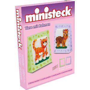 Doktorfisch Ministeck 32563 999103
