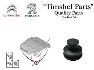 1x-copertura-del-motore-Clip-Peugeot-307-308-407-508-607-807-CITROEN-c4-c5-c8-2-0-HDI