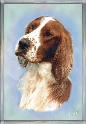 Irish Red & White Setter Dog A6 Blank Card No 2 by Starprint