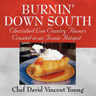 Burnin' Down South by Chef David Vincent (Paperback / softback, 2008)