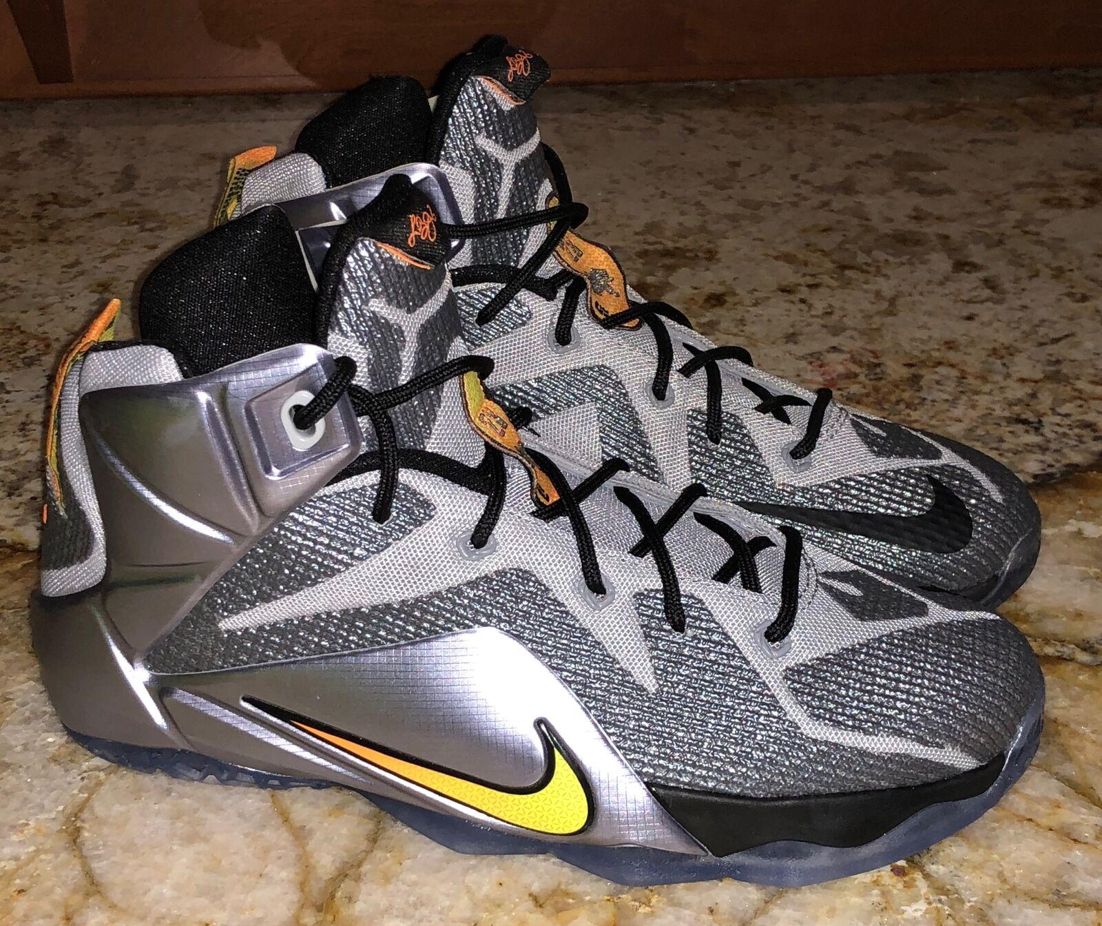 lebron james the twelve shoes price
