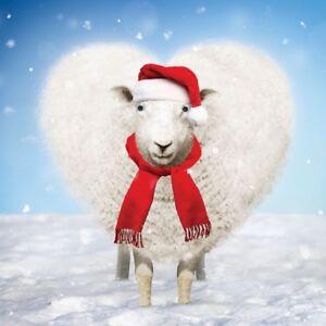 e804b3a779d Sheep Christmas Card 3D Goggly Eyes Cosy Santa Hat Scarf Funny ...