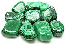 TUMBLED - (1) LG/XL MALACHITE Crystal w/ Description Card - Healing, Reiki Stone