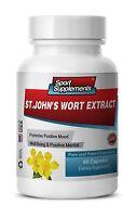 Ginkgo Herb Supplement - St. John's Wort Extract 475mg - Boost Brain Pills 1b