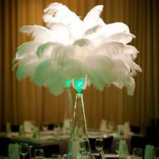 Wholesale 12-14inch 10pcs/lots Natural Ostrich Feathers Wedding Party Wall Decor
