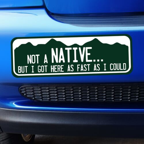Bumper Sticker Large Colorado Not a Native But I got here as fast as I could