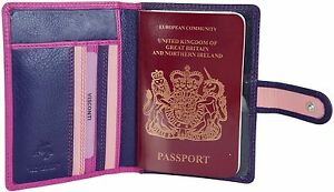 VISCONTI SOFT LEATHER PASSPORT AND CREDIT CARD HOLDER - IN BERRY MULTI - RB75