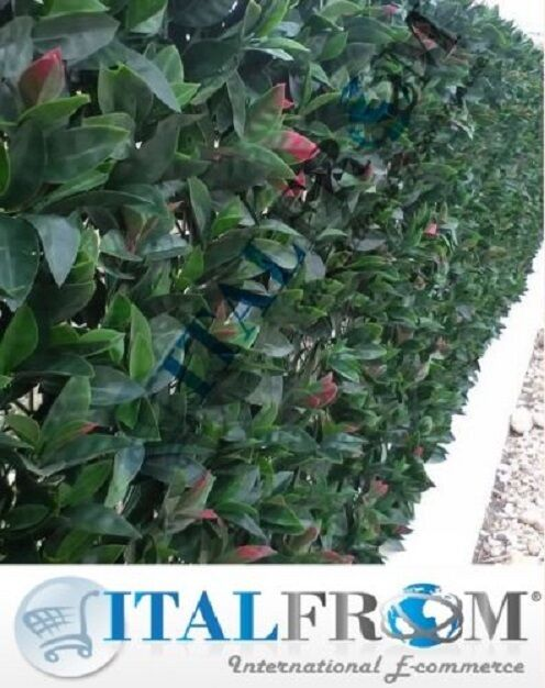 Artificial Topiario delimitados hojas de cobertura (12 un. - 3m²) Boj Valla Jardín Parojo
