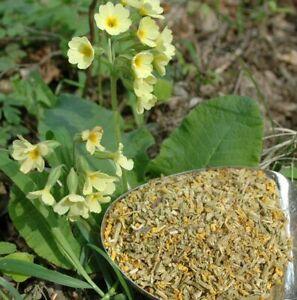 Krauterino 24-chiave fiori M. calice tagliati - 250g