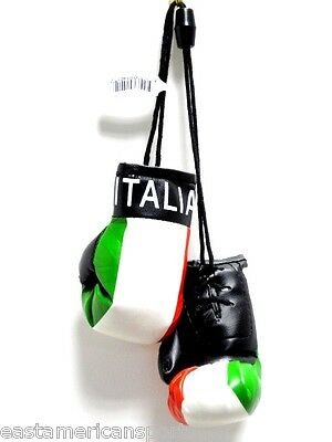 South Africa Flag mini boxing gloves for your car mirror-Get the best.Great Gift