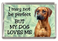 "Rhodesian Ridgeback Dog Fridge Magnet ""I may not be perfect ......"" by Starprint"