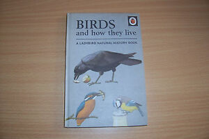 LADYBIRD-BOOK-Birds-and-How-They-Live-by-F-E-Newing-Richard-Bowood