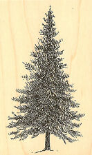 Fir Pine Tree Wood Mounted Rubber Stamp Impression Obsession Stamp D1293 New