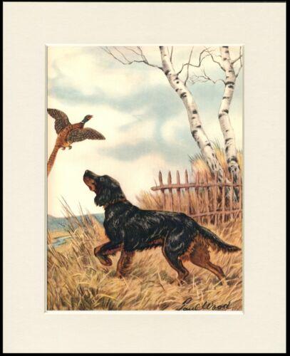 GORDON SETTER DOG AND PHEASANT PRINT MOUNTED READY TO FRAME