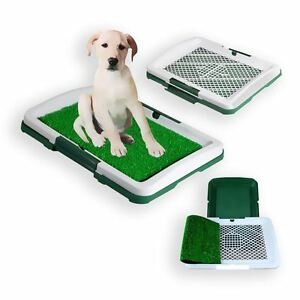 Dog Animal Puppy Pet Potty Training Pad Toilet Litter Mat Tray Grass Pee Pad 741870139345