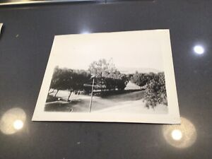 HISTORIC 1901 PHOTO HOLLYWOOD BLVD AT CAHUENGA STREET SCENE MOUNTAINS CITRUS