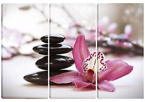 Quadro moderno orchidea su sassi 3pz 60x90 arredo casa bar ufficio