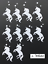 Small Unicorn Die Cuts for Cardmaking /& crafts Assorted sets of 10