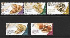 PITCAIRN ISLANDS SG637/41 2003 CONUS SHELLS MNH