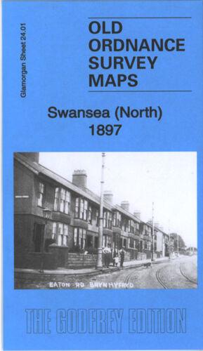 OLD ORDNANCE SURVEY MAP SWANSEA NORTH 1897 HAFOD FOXHOLE CWMBWRLA LLANSAMLET
