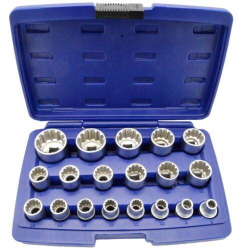 Steckschlüssel Satz 1//2 Zoll Werkzeug Set 19-tlg 8-32 Vielzahn Nüsse Torx Nuß