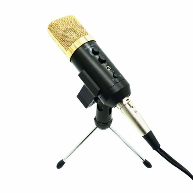 Vocal Mic Professional Large Diaphragm Studio Recording Microphone MK-F400TL MS